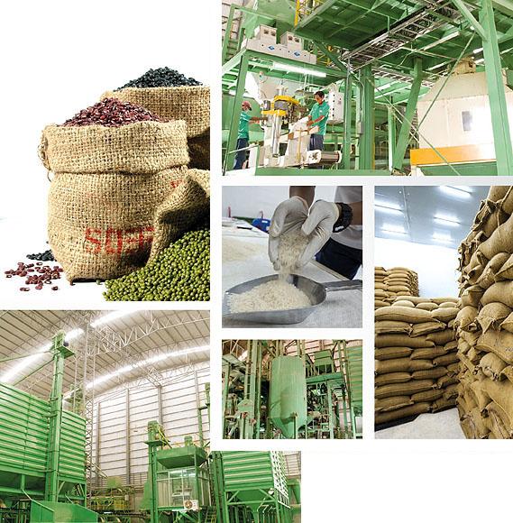 Nanapan Company Supplier of beans, corn, rice and grains
