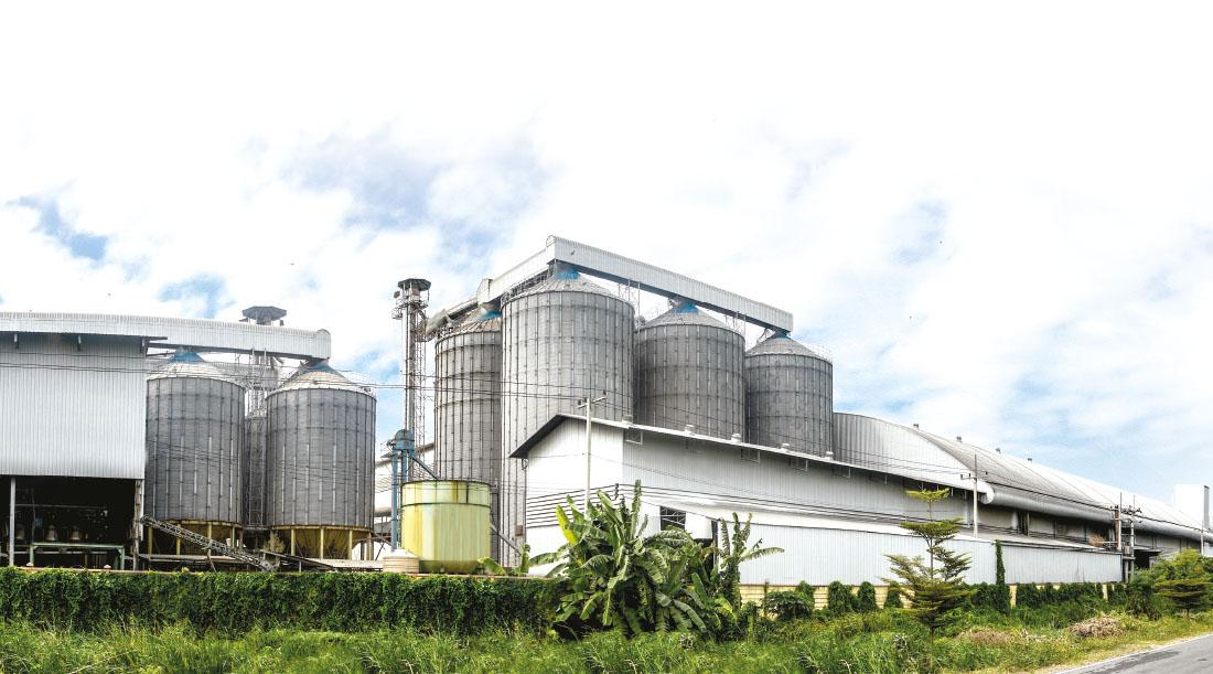 Production plant of Nanapan company