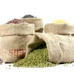 seed&grain-g06